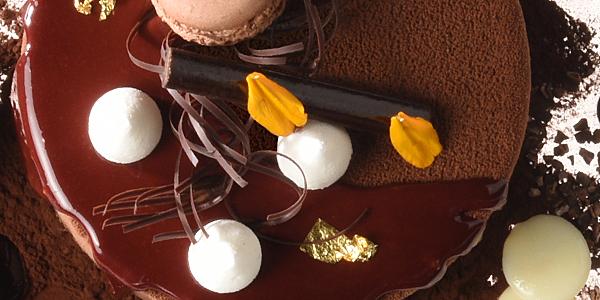 Glasuren | Überzugs- | Modelliermassen auf Kakaobasis
